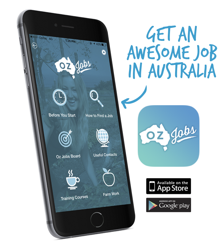 Oz Jobs Program & App
